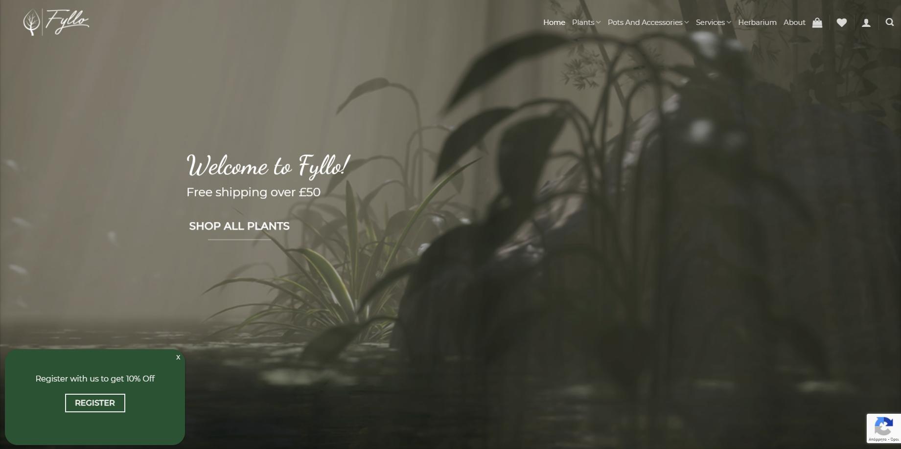 Fyllo Plants